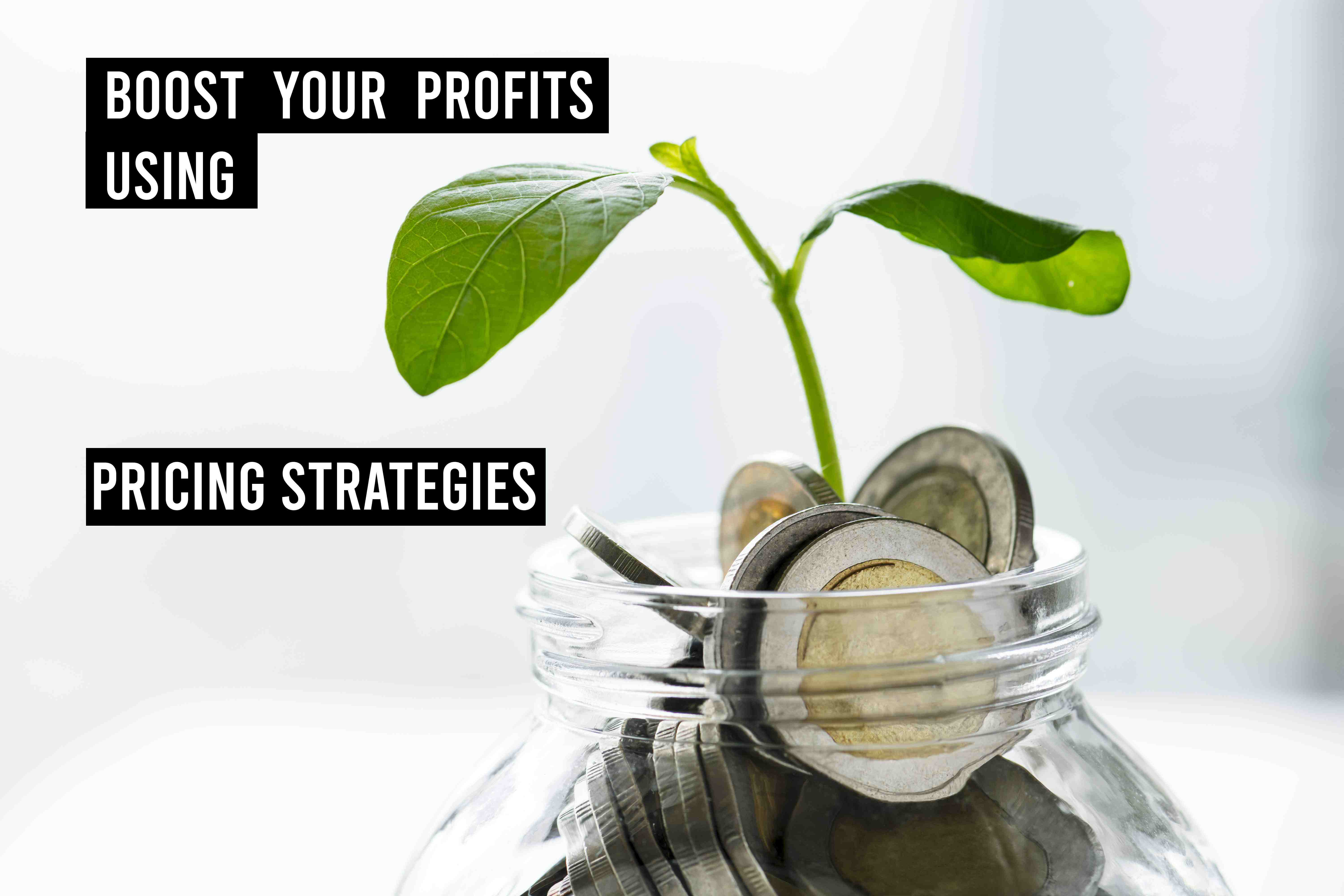 Image with title boost your profits using pricing strategies