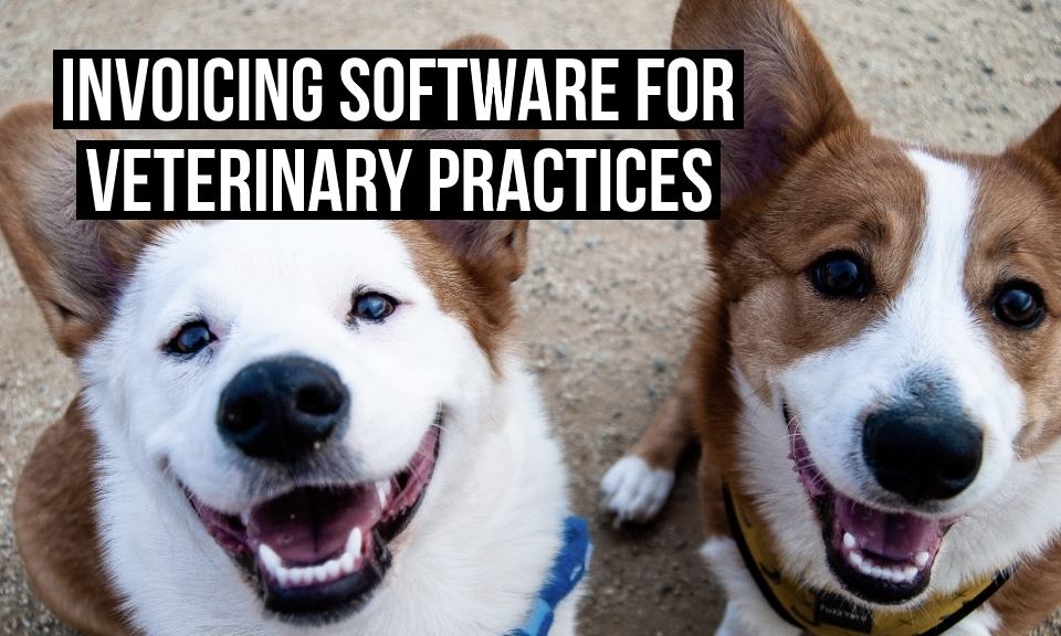 Invoicing software for veterinary practices